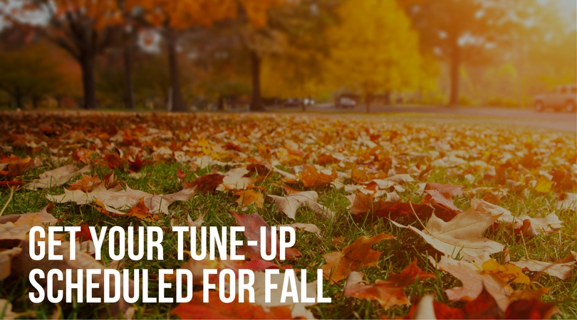 get-your-tune-up-scheduled-for-fall