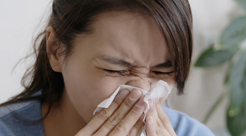 fight allergies with your hvac