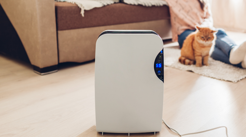 what to know about air purifiers